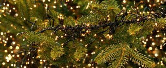 weihnachtsbeleuchtung.png
