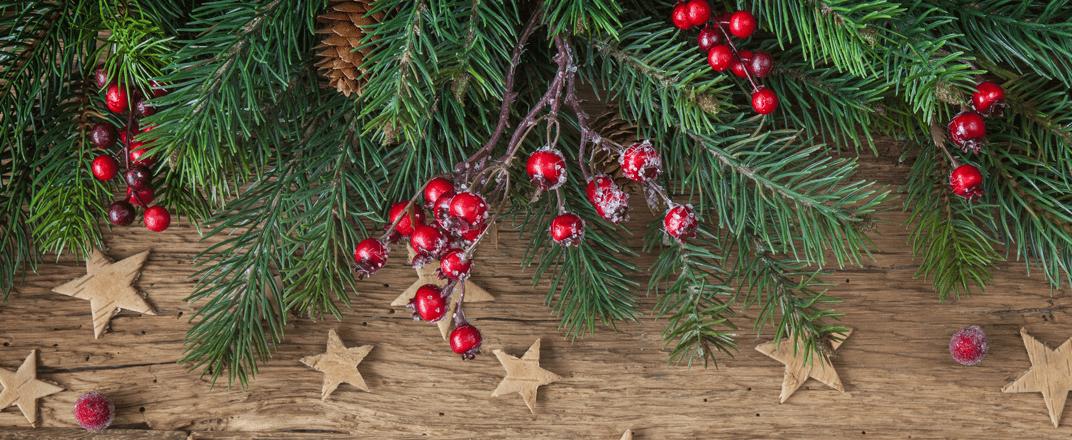 weihnachtsgirlanden_weihnachtskr_nze.png